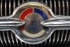 1957 buick special emblom