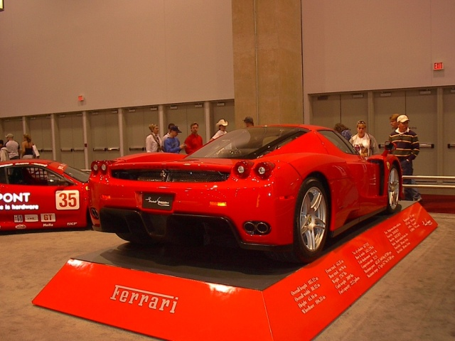 red-euro-exotic