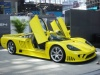 Yellow Saleen, doors open